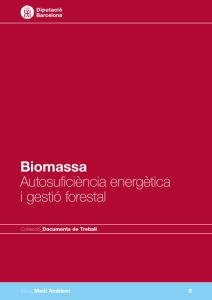 llibrebiomassa-212x300